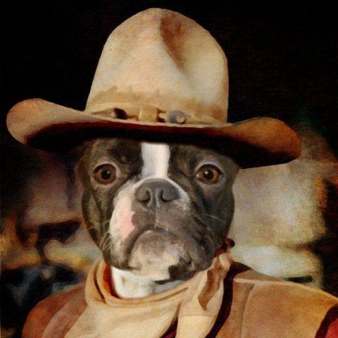 Dog Cowboy